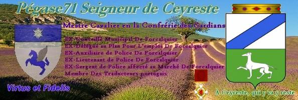 La Taverne - Page 6 Pegasu10