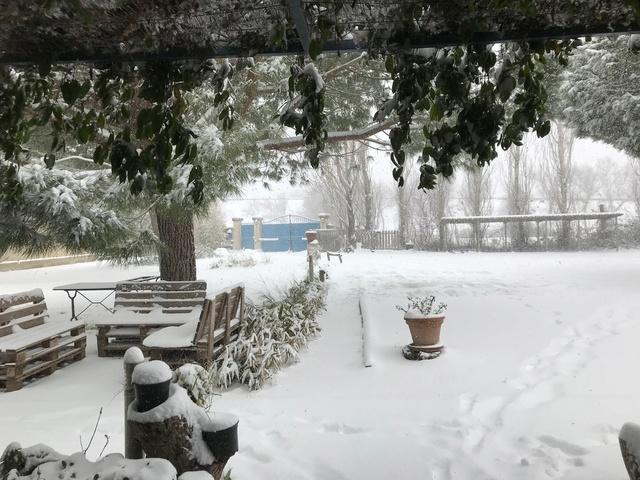 Neige dans le Var Img_6510