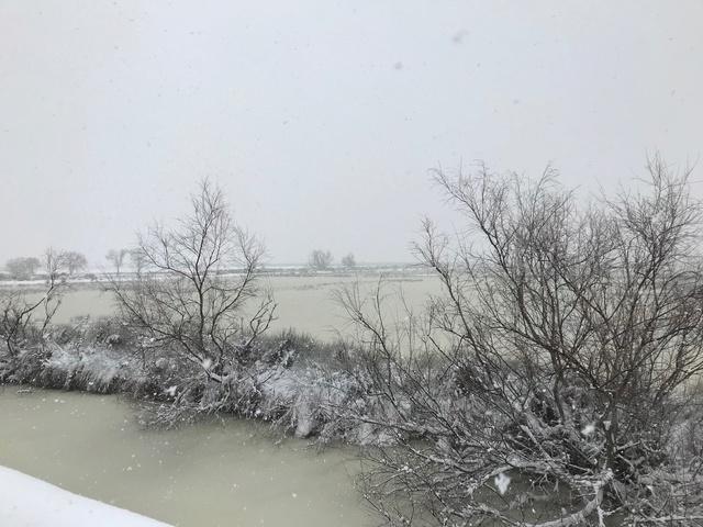 Neige dans le Var Img_6611