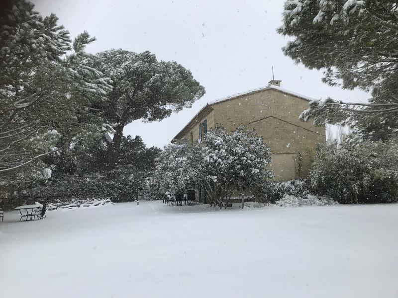 Neige dans le Var Img_6614