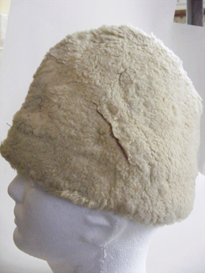 Identification coiffure. Dscf1426