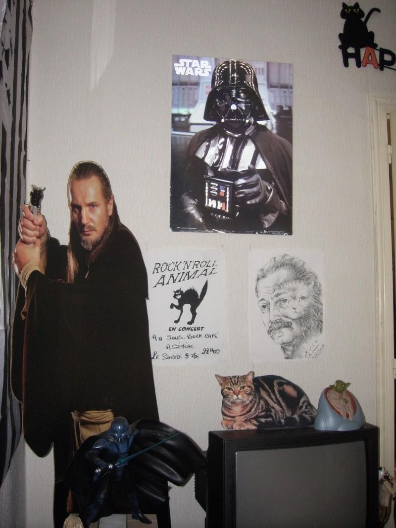 Collection de Figurines de Dark Jedi 65 - Page 6 Spa50021
