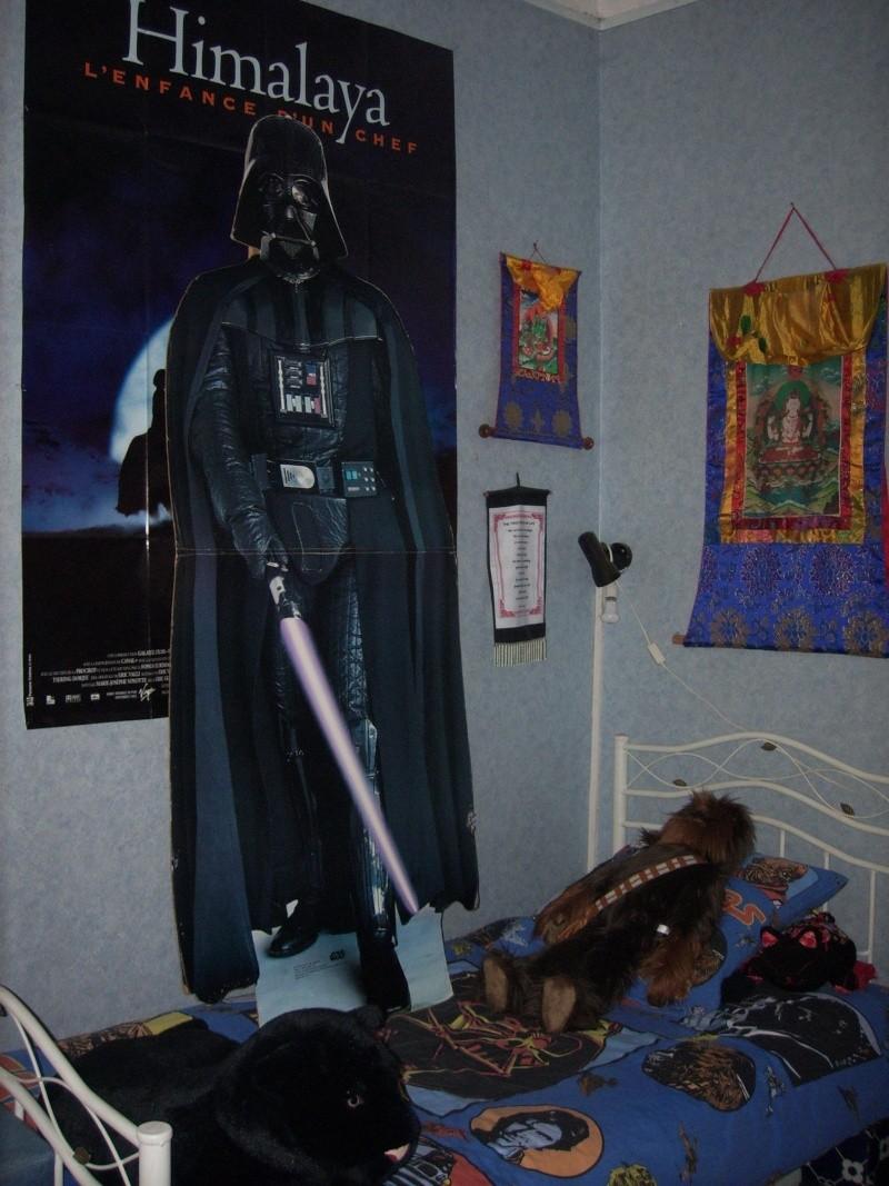 Collection de Figurines de Dark Jedi 65 - Page 6 Spa50027