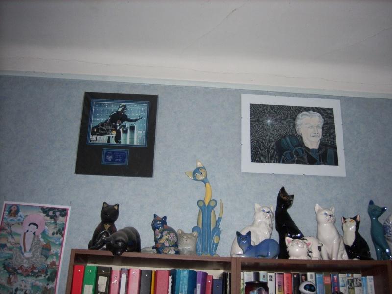 Collection de Figurines de Dark Jedi 65 - Page 6 Spa50029
