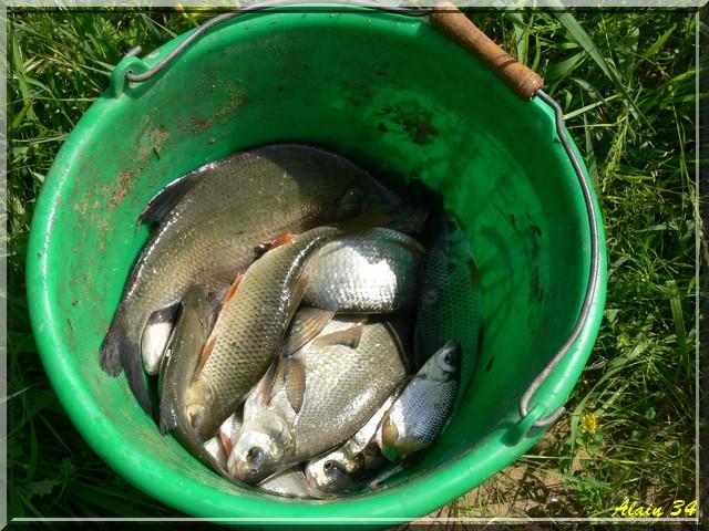 Pesca au Lez Pec410