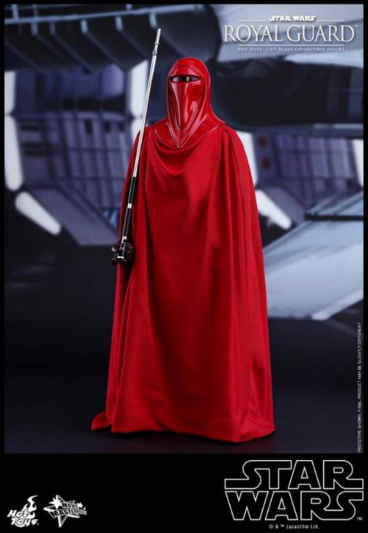 Hot Toys Star Wars - Royal Guard Sixth Scale Figure Royalg12