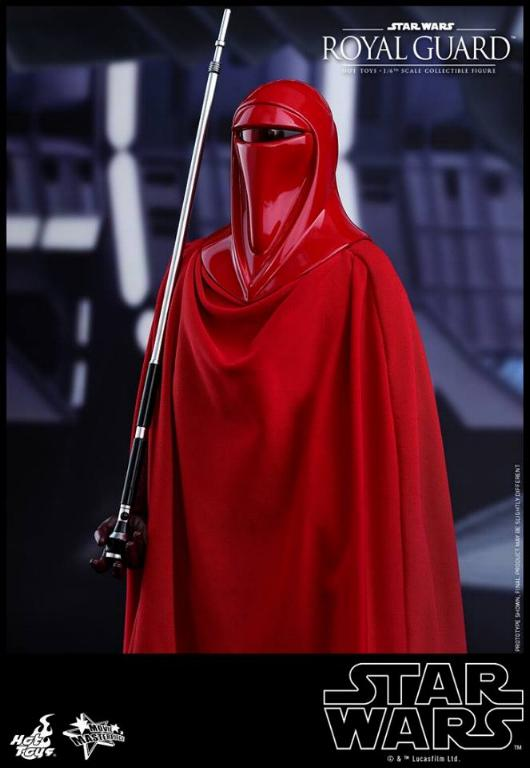 Hot Toys Star Wars - Royal Guard Sixth Scale Figure Royalg13