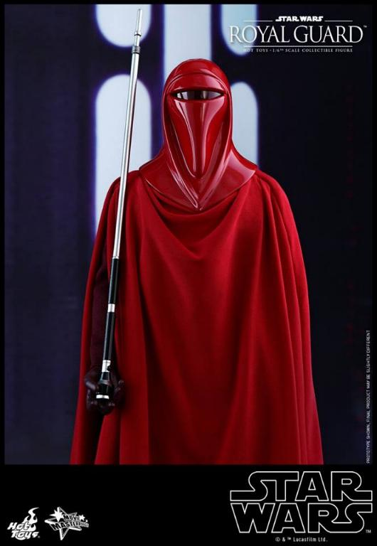Hot Toys Star Wars - Royal Guard Sixth Scale Figure Royalg14