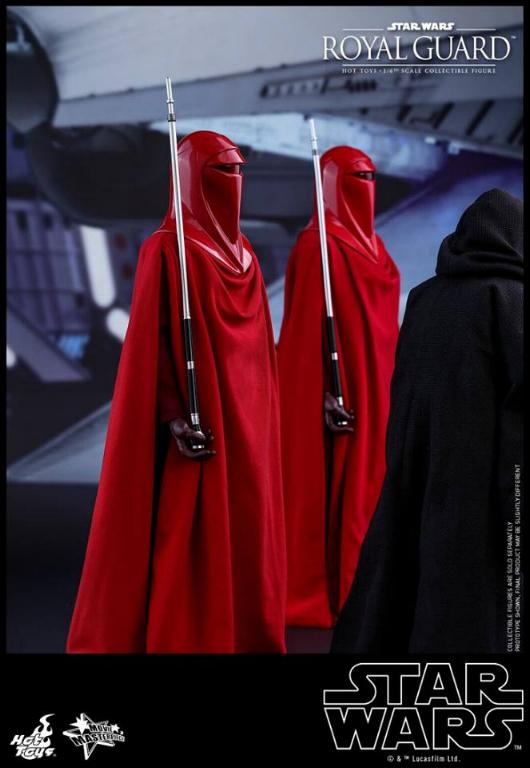 Hot Toys Star Wars - Royal Guard Sixth Scale Figure Royalg15