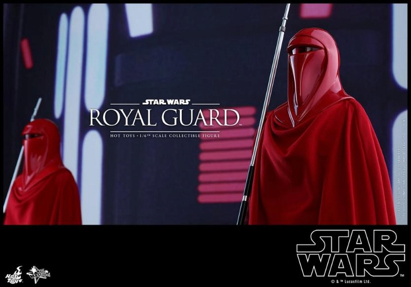 Hot Toys Star Wars - Royal Guard Sixth Scale Figure Royalg19
