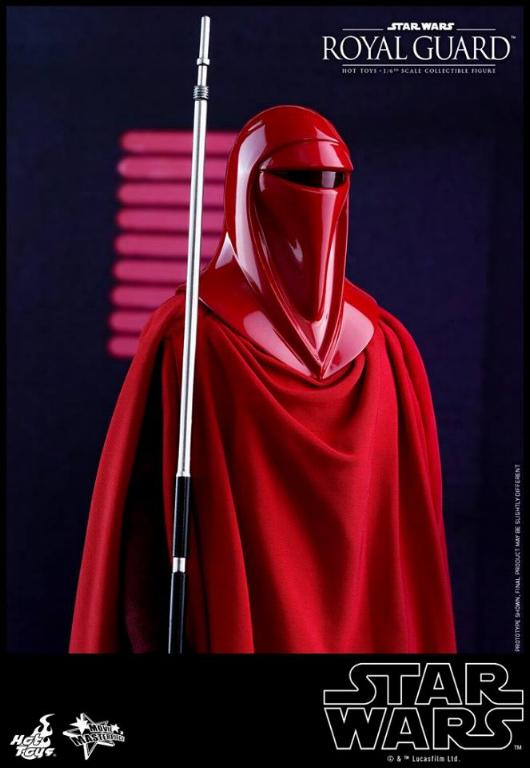 Hot Toys Star Wars - Royal Guard Sixth Scale Figure Royalg20