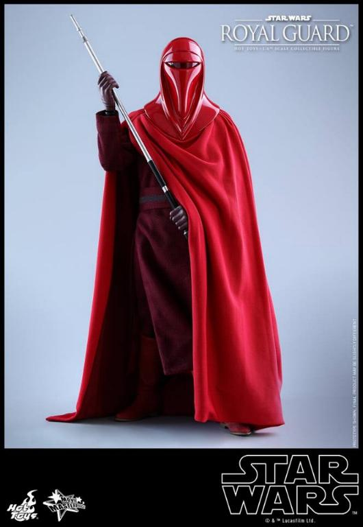 Hot Toys Star Wars - Royal Guard Sixth Scale Figure Royalg21