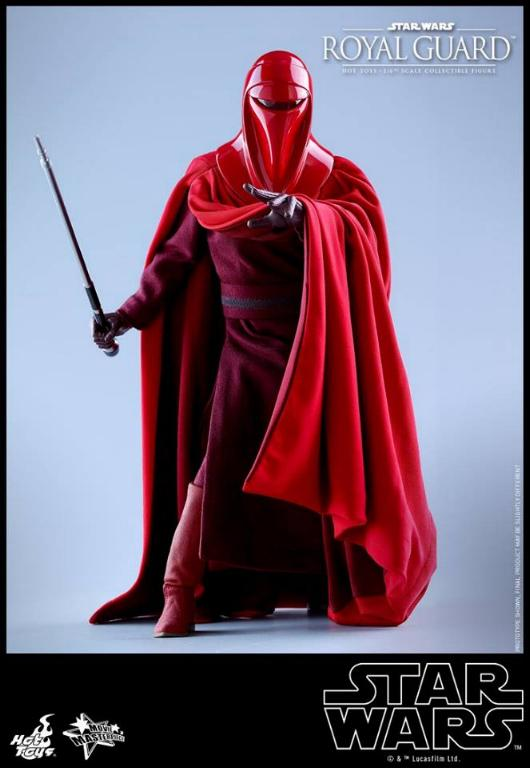 Hot Toys Star Wars - Royal Guard Sixth Scale Figure Royalg23
