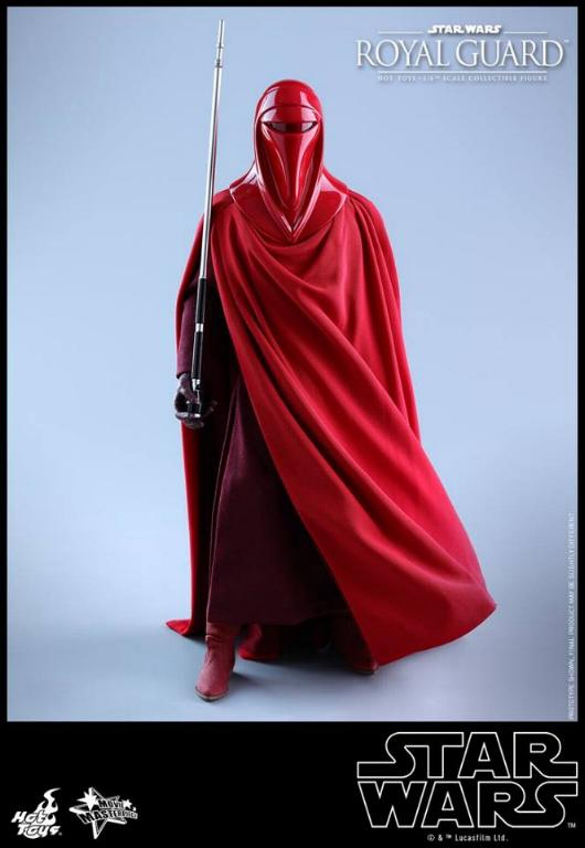 Hot Toys Star Wars - Royal Guard Sixth Scale Figure Royalg24