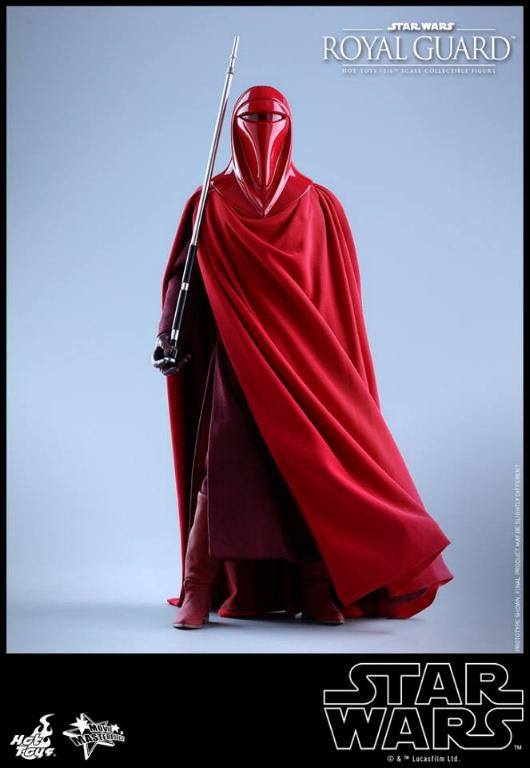 Hot Toys Star Wars - Royal Guard Sixth Scale Figure Royalg25