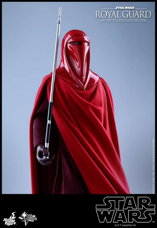 Hot Toys Star Wars - Royal Guard Sixth Scale Figure Royalg27