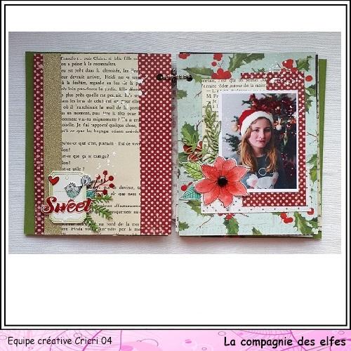 Mini album by Cricri, Noël, souvenirs. Cricr119