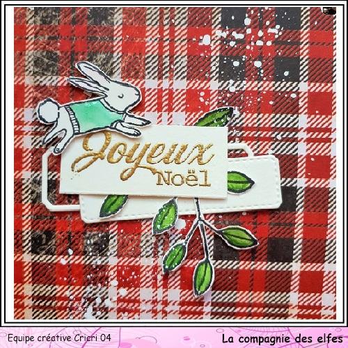 Mini album by Cricri, Noël, souvenirs. Cricr126