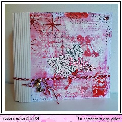 Pochette surprise Rose  Cricr139