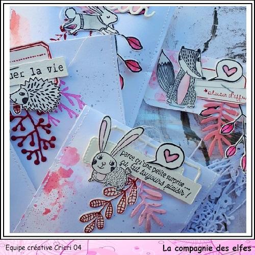 Pochette surprise Rose  Cricr147