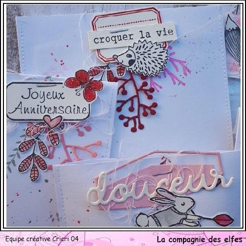 Pochette surprise Rose  Cricr148