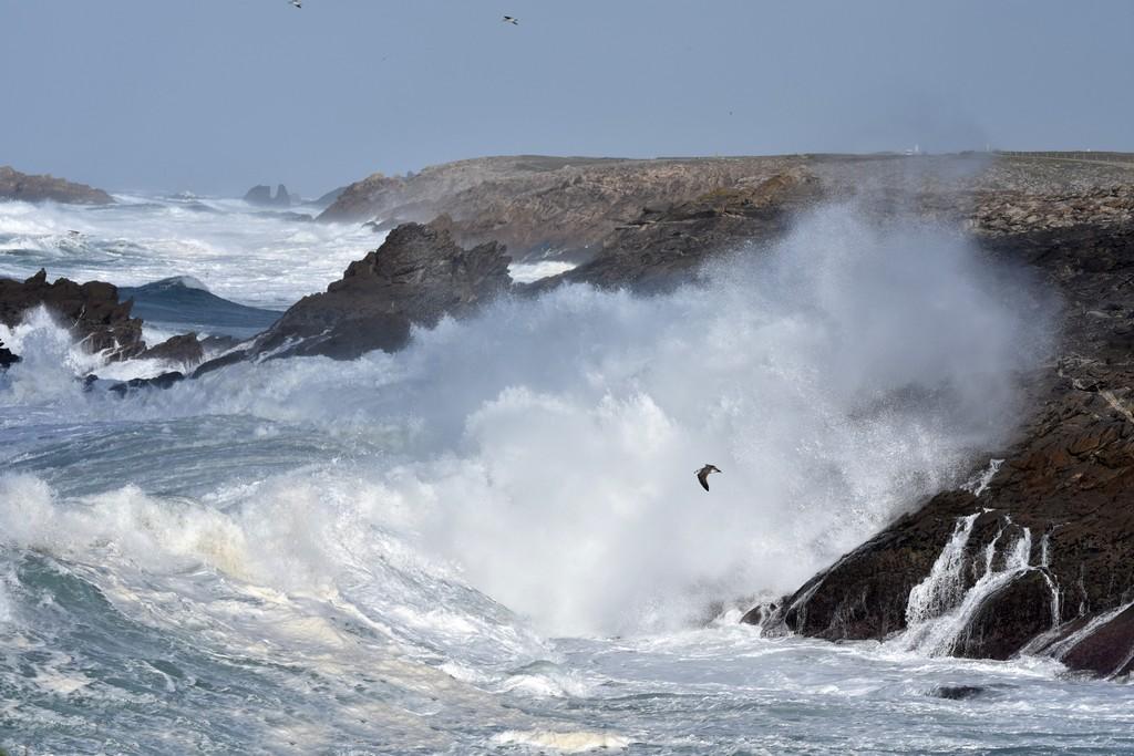 Première grande lessive d'automne en mer ! Dsc_0410