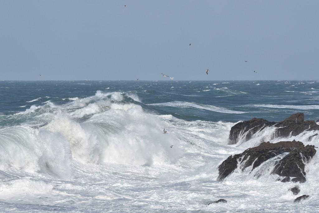 Première grande lessive d'automne en mer ! Dsc_0411