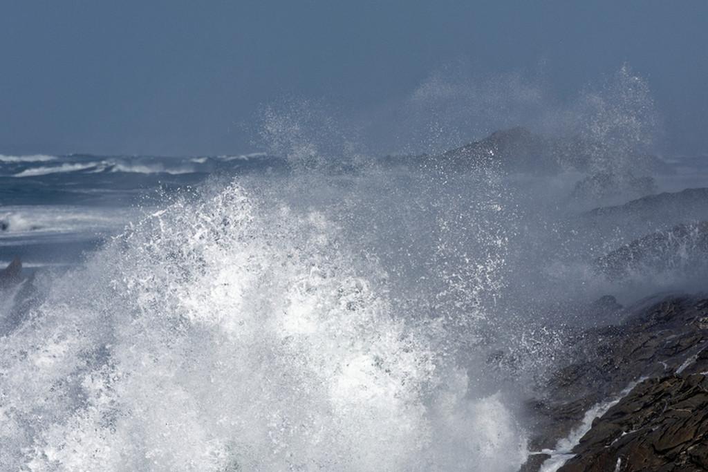 Furie maritime  Dsc_0412