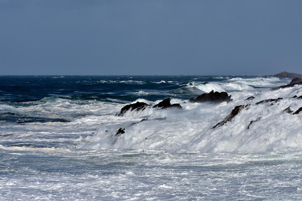 Furie maritime  Dsc_0419