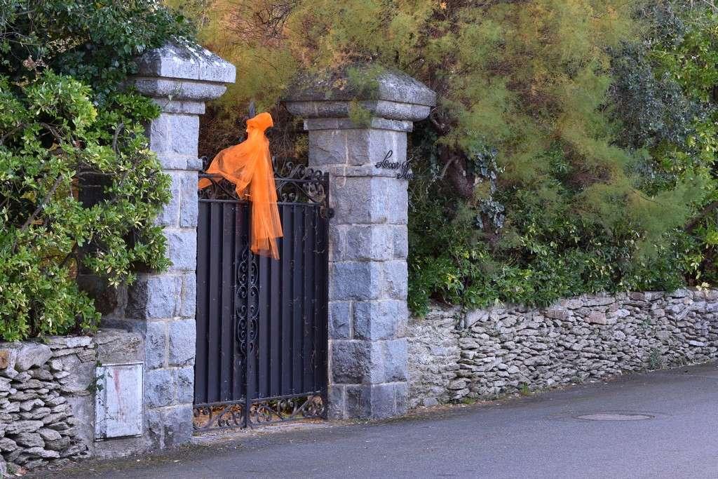 """Vestige d'""""Halloween"""" Dsc_1126"""