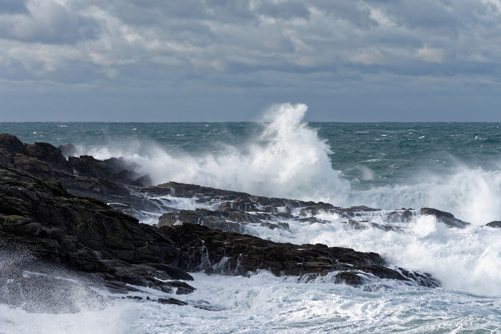 La tempête Ana est là. série 1 Dsc_1427