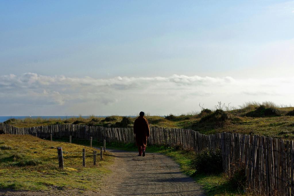 Le solitaire de la Pointe du Conguel Quiberon ! Dsc_1629