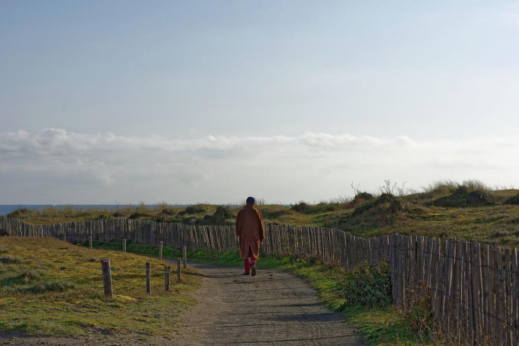 Le solitaire de la Pointe du Conguel Quiberon ! Dsc_1632