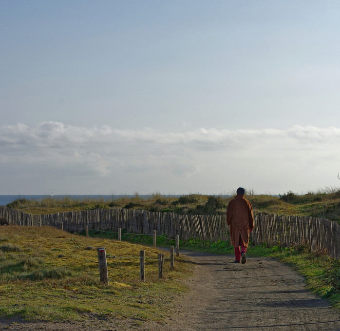 Le solitaire de la Pointe du Conguel Quiberon ! Dsc_1633