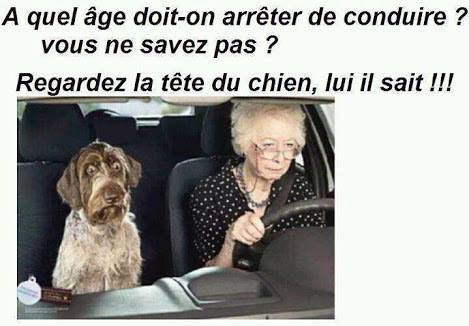 Les Permis de Conduire Bientôt Invalidés Pour les + 70 ans ? 15894410
