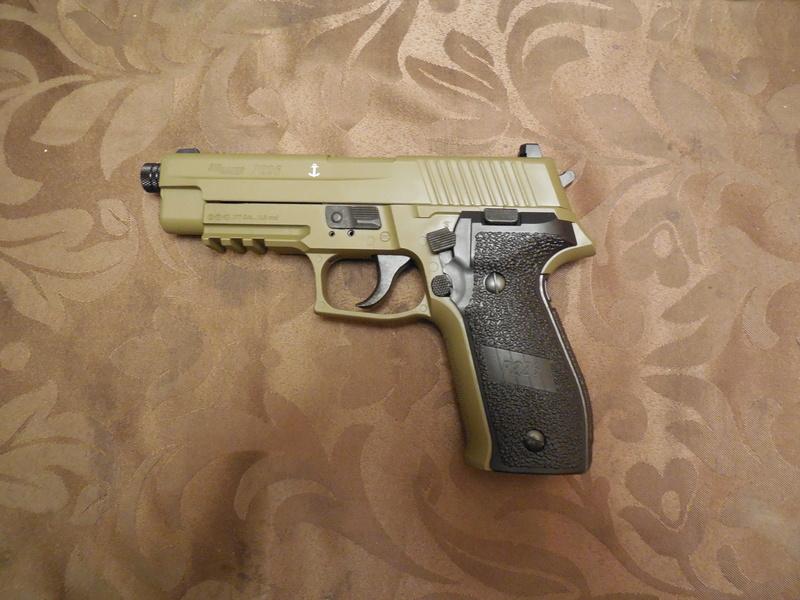 Le Sig Sauer P226 Blow Back plombs Dscn2947