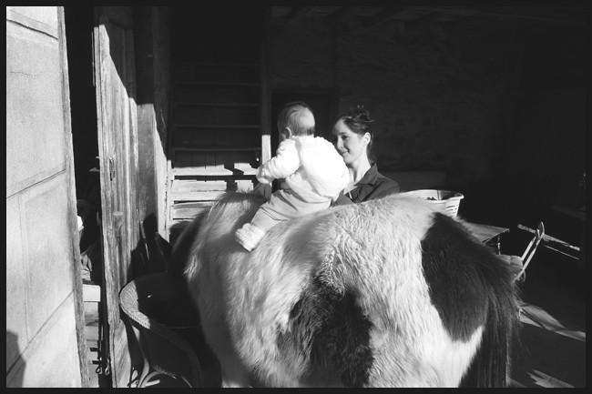 Ulan gypsy, sa première cavalière ! P1030313