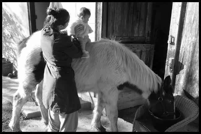 Ulan gypsy, sa première cavalière ! P1030314