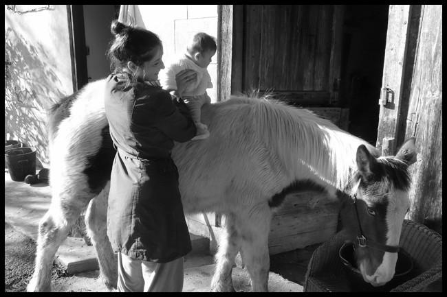 Ulan gypsy, sa première cavalière ! P1030315