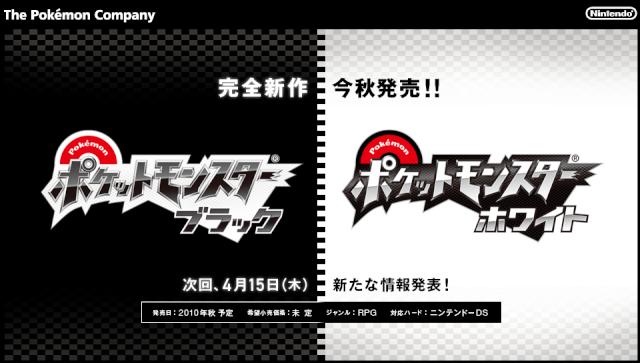 Pokemon Black Version & Pokemon White Version Screen10