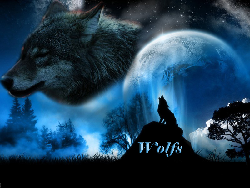 Alliance Wolfs