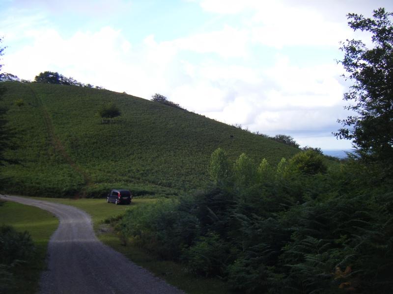 Vacances au Pays Basque été 2010 - Page 2 Dscf8220