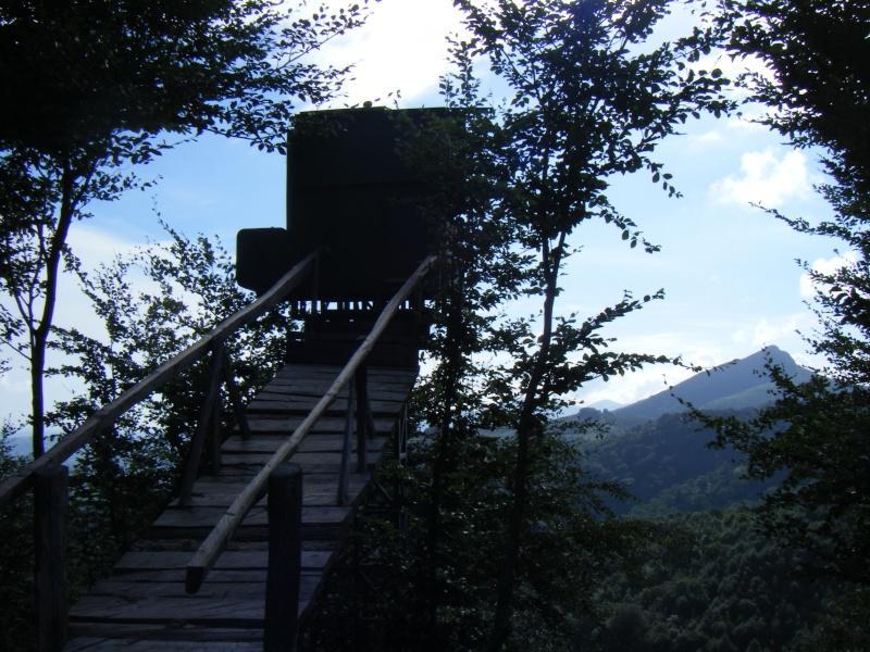 Vacances au Pays Basque été 2010 - Page 2 Dscf8222