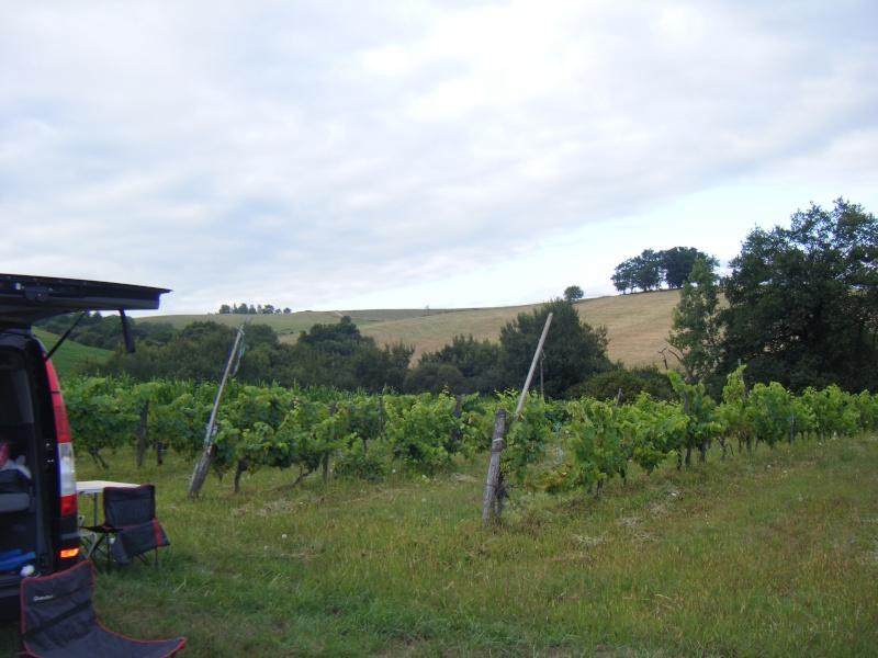Vacances au Pays Basque été 2010 - Page 2 Dscf8317
