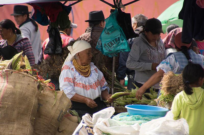Voyage en Equateur. Otaval10