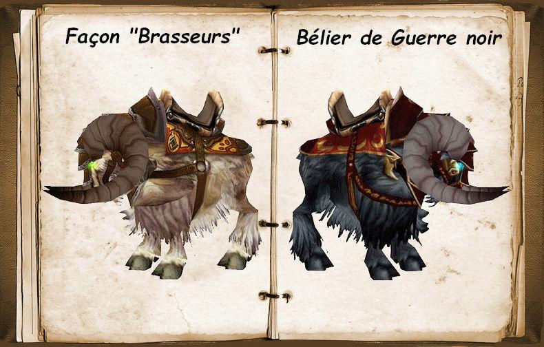 Les béliers et leurs cuirasses Bylier10