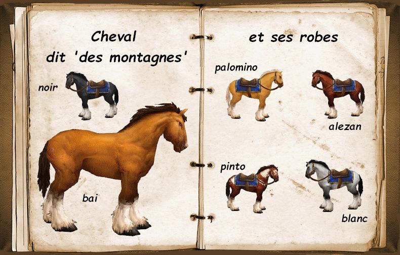 Les chevaux et leurs cuirasses Cheval10