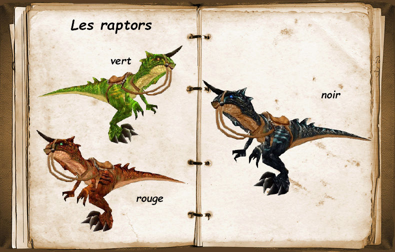 Les raptors Raptor14