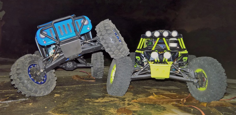 WL Toys 10428 Wild Track Wp_20110