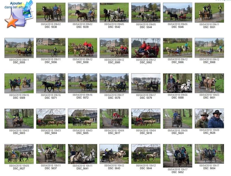 8 Avril 2018 - Randonnée des Hautes Falaises, avec le clip-diaporama et l'accès aux photos de l'album. Album_10